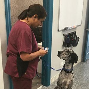 Dr. Kiran Singh and patient